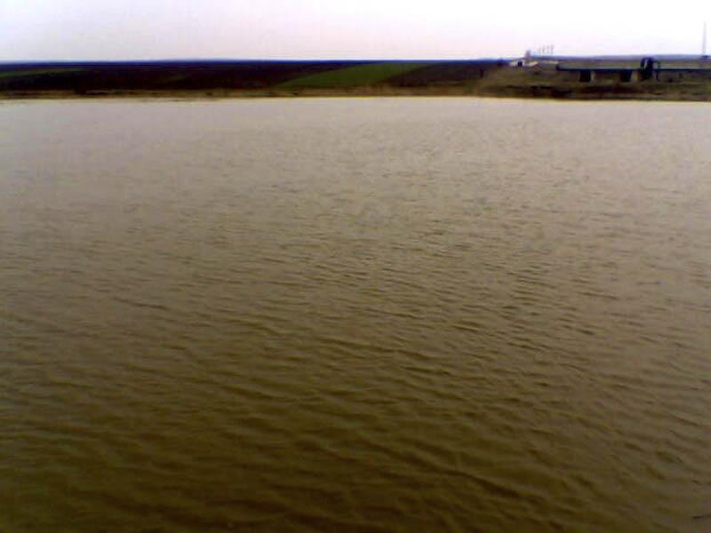 100 de botosaneni vor sa intre in posesia unor suprafete de lacuri!