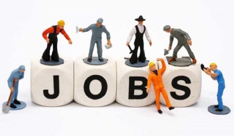 1216 de locuri de muncă valabile în această săptămână la AJOFM Botoșani
