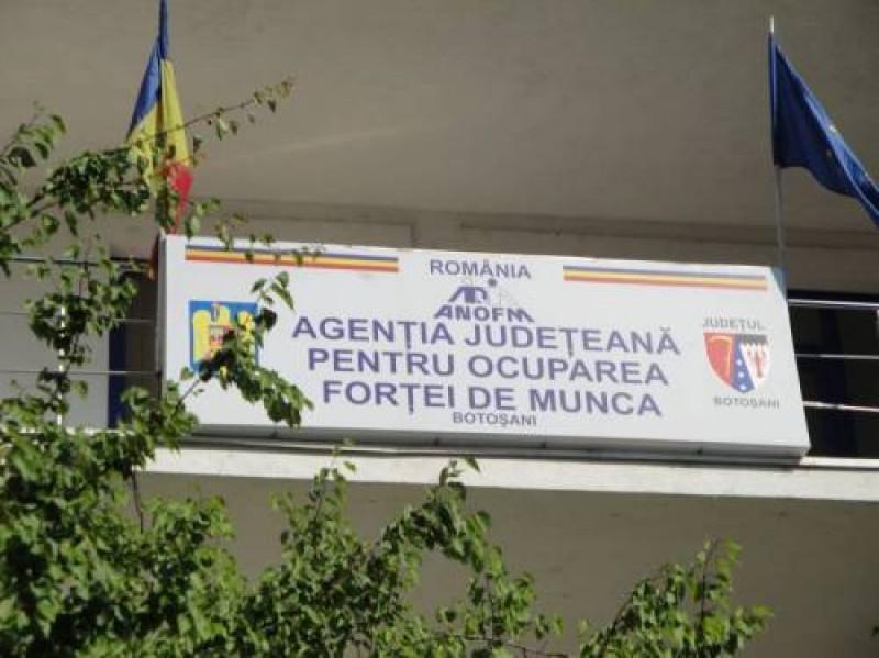 1.833 de persoane angajate prin intermediul la Botoșani, prin intermediul AJOFM!
