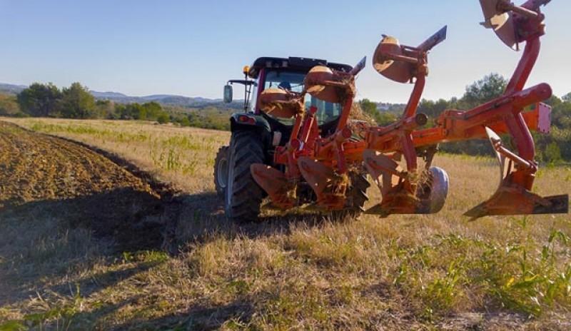 20.223 cereri de plată pentru agricultură depuse la Botoșani. Cererile unice de plată aferente Campaniei 2020 se pot depune până la 15 iunie