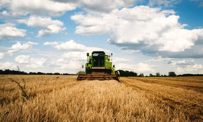 22.920 cereri unice de plată primite la Botoșani pentru subvențiile agricole din 2021