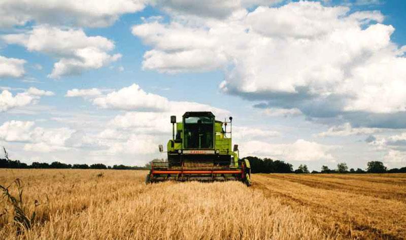 31.777 cereri unice de plată în agricultură la Botoșani