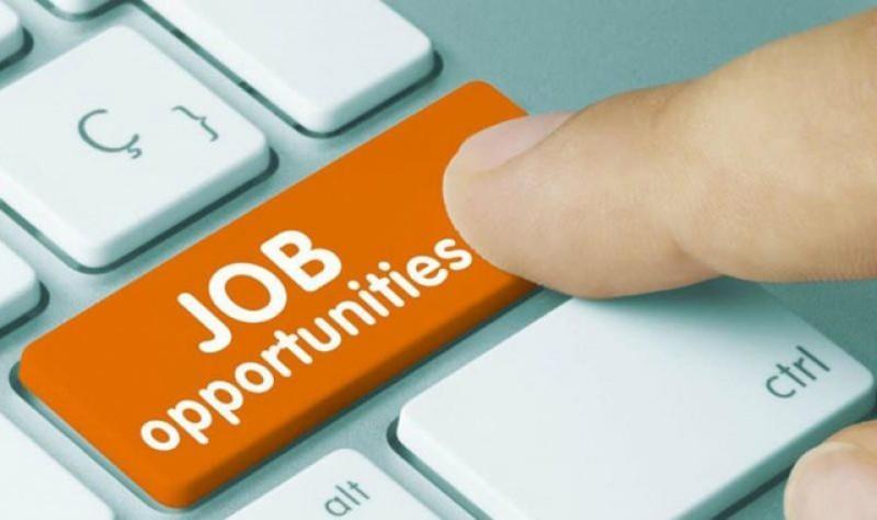 358 de locuri de muncă disponibile în această săptămână la Botoșani
