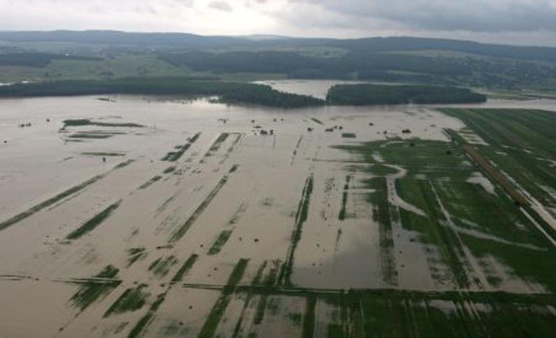 500 de hectare de păşune şi terenuri agricole de pe raza localităţii Baranca, acoperite de apele Prutului