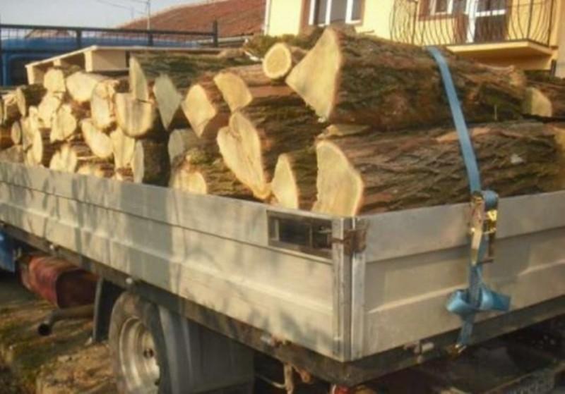 5.000 de lei amendă pentru 2,52 metri cubi de scândură. Marfa a fost confiscată!