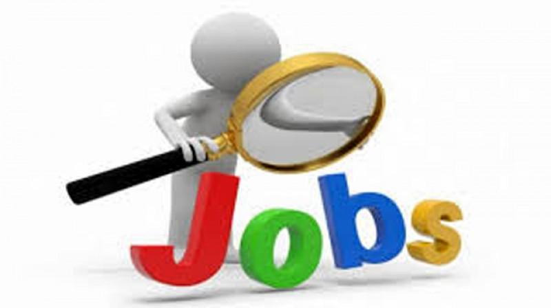 540 de locuri de muncă valabile în această săptămână la AJOFM Botoșani