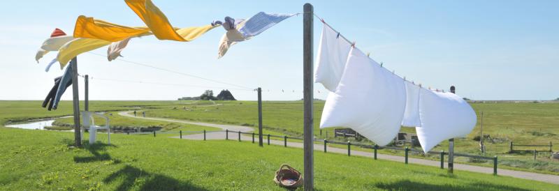7 motive pentru care să speli covoarele la STAR CLEAN Botoșani
