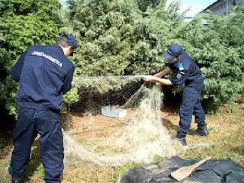 Misiuni executate de jandarmi pe linia prevenirii şi combaterii braconajului cinegetic, piscicol şi a tăierilor ilegale de material lemnos!