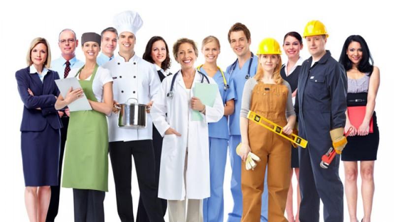 801 locuri de muncă valabile în această săptămână la AJOFM Botoșani