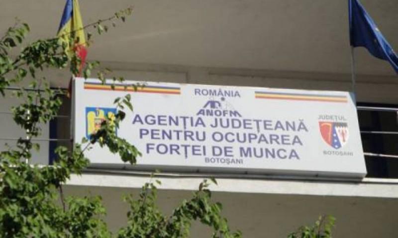 803 locuri de muncă disponibile în Botoşani