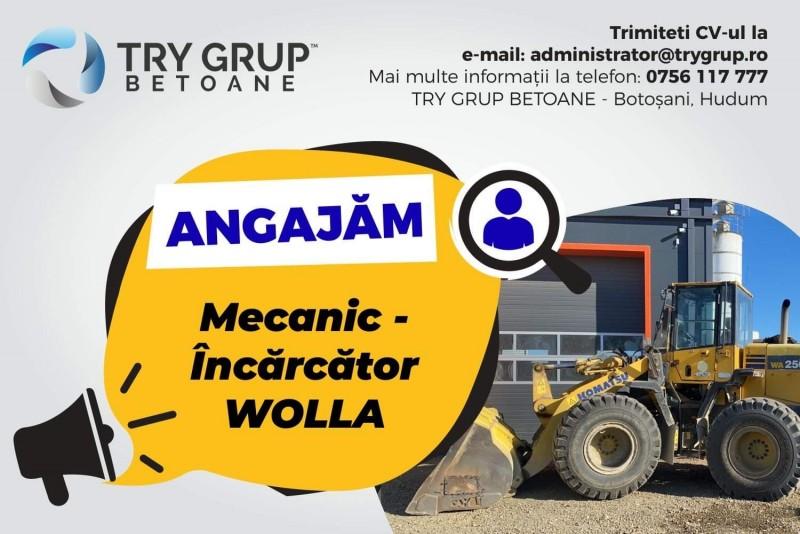 (A) Anunț angajare Try Grup Betoane Botoșani