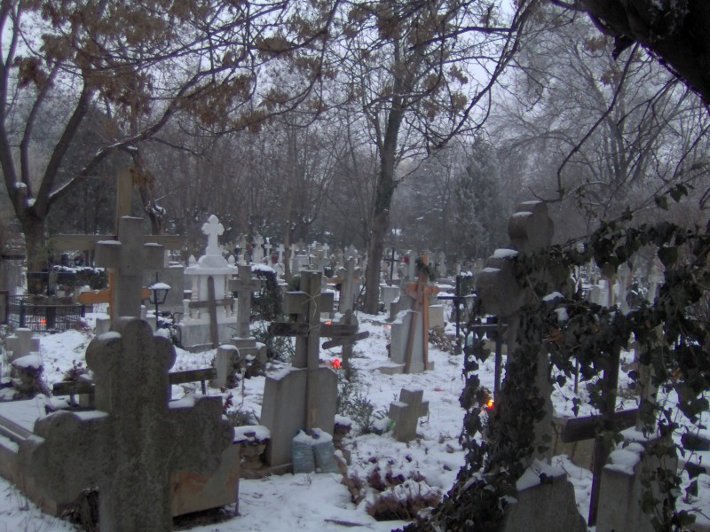 A murit la spital: Botoșănean găsit înghețat pe o alee din cimitir!