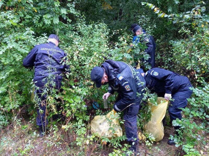 Acțiune de ecologizare desfășurată de jandarmi în pădurea Rediu