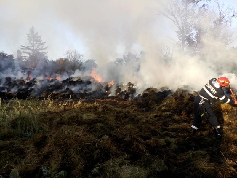 ACUM: Incendiu într-o comună din județ. Vegetația a luat foc (FOTO)