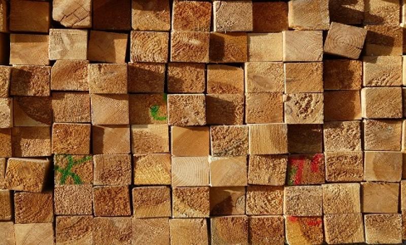 Afacerea de acasă nu s-a potrivit cu cea din târg: 3.000 de lei amendă și lemn confiscat!