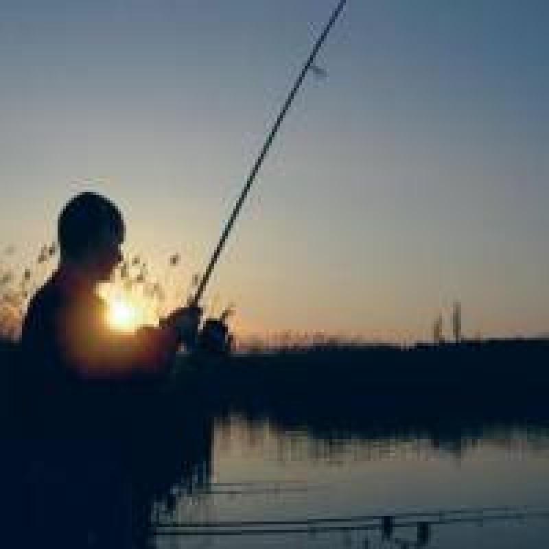 Afacerile vietii: Tu cum vrei sa pescuiesti?