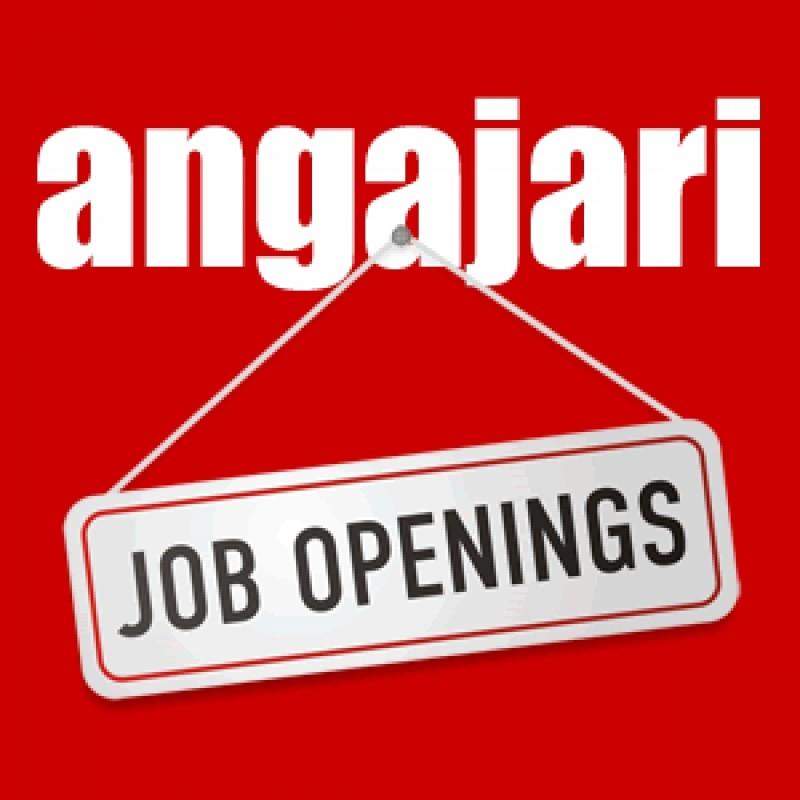 AJOFM Botoșani: peste 200 de locuri de muncă disponibile și cursuri pentru zece tipuri de calificare profesională