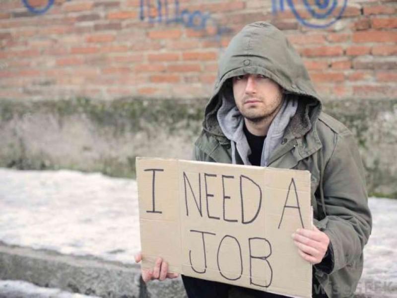 AJOFM Botoșani: Rata șomajului înregistrat în iunie, în ușoară scădere. Doar 2,94% dintre inactivi au abolvit studii superioare