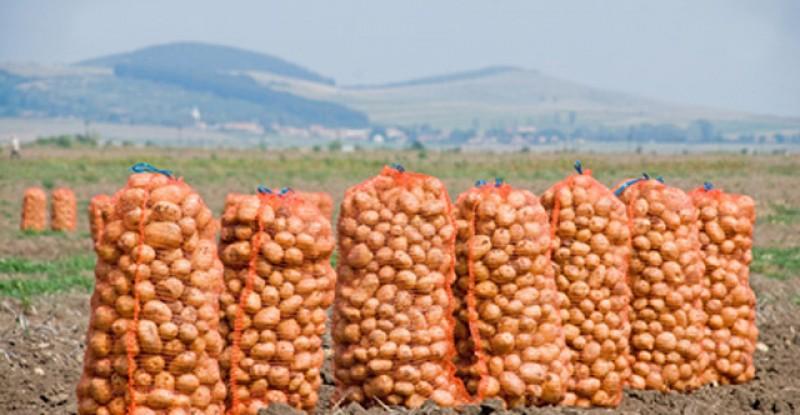 Amendă dată de polițiști: 5000 de lei pentru 15 saci de cartofi!