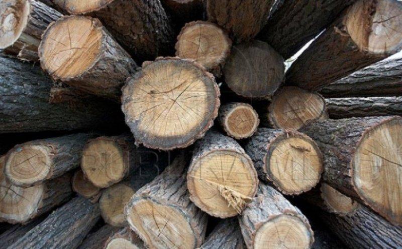 Amendă de 3000 de lei și lemnul confiscat!