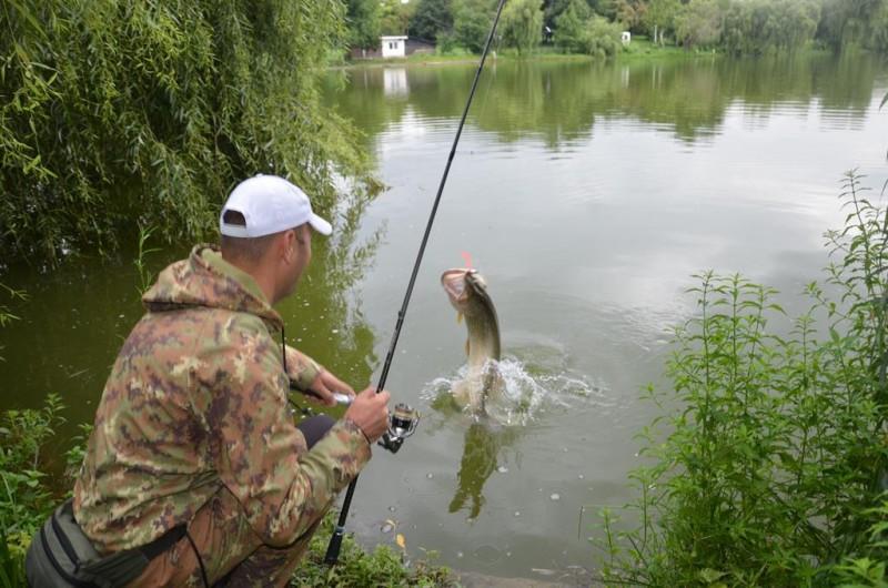 Amenzi date de Jandarmerie, pentru pescuit neregulamentar