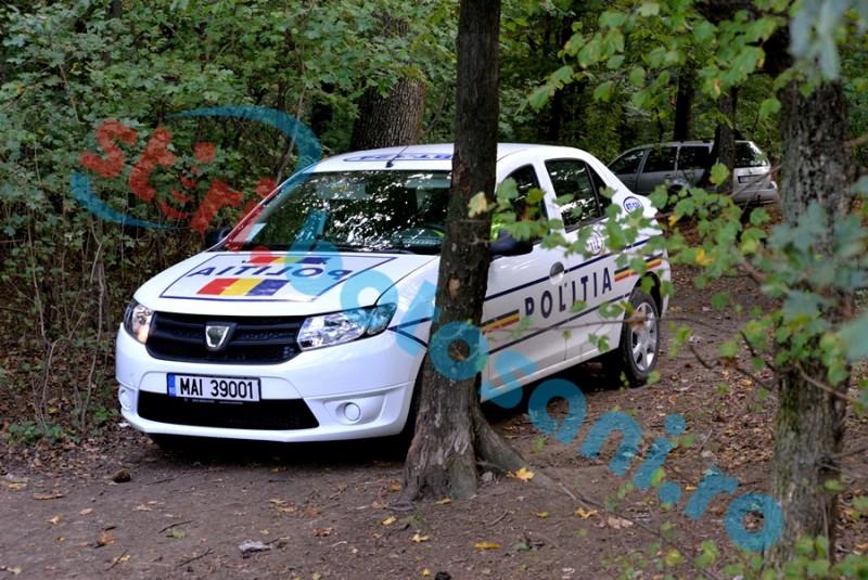 Anchetă a Poliției, după ce mai multe animale au fost găsite spânzurate într-o pădure