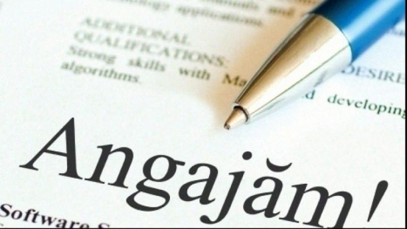 Angajări în instituții publice din Botoșani! Vezi lista posturilor!
