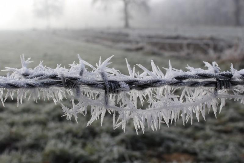 ANM: O masă de aer polar va traversa România. Se așteaptă temperaturi negative şi brumă