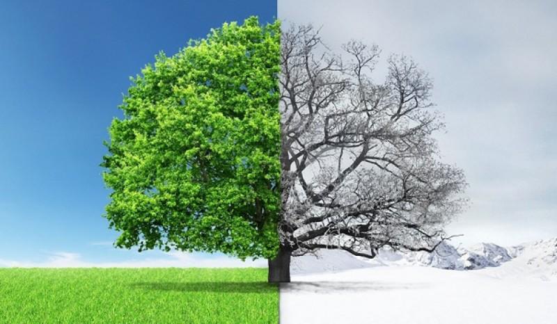 ANM: Vreme deosebit de rece pentru această perioadă din martie. Când se va încălzi!