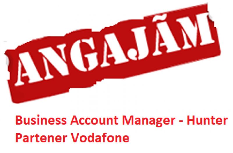 Anunt angajare Business Account Manager