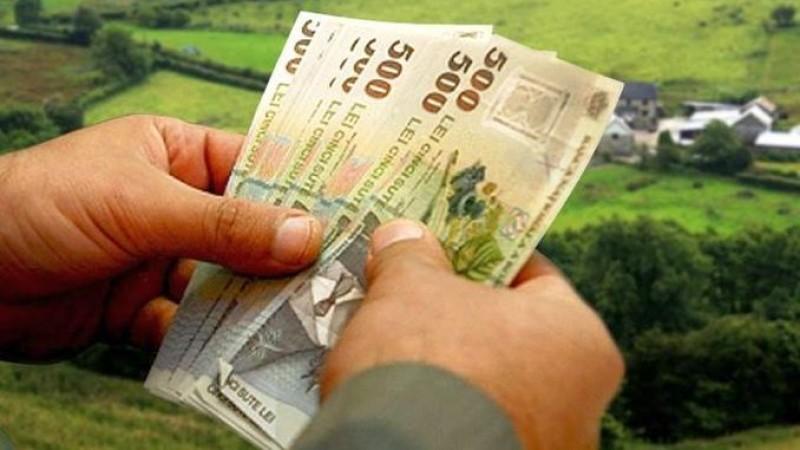 APIA BOTOȘANI: 17 noiembrie, data limită de depunere a cererilor pentru ajutorul de stat pentru prima împădurire!
