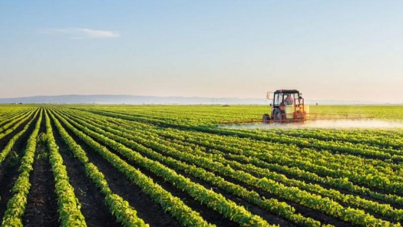 APIA demarează Campania de plată în avans a fermierilor care au depus cereri unice