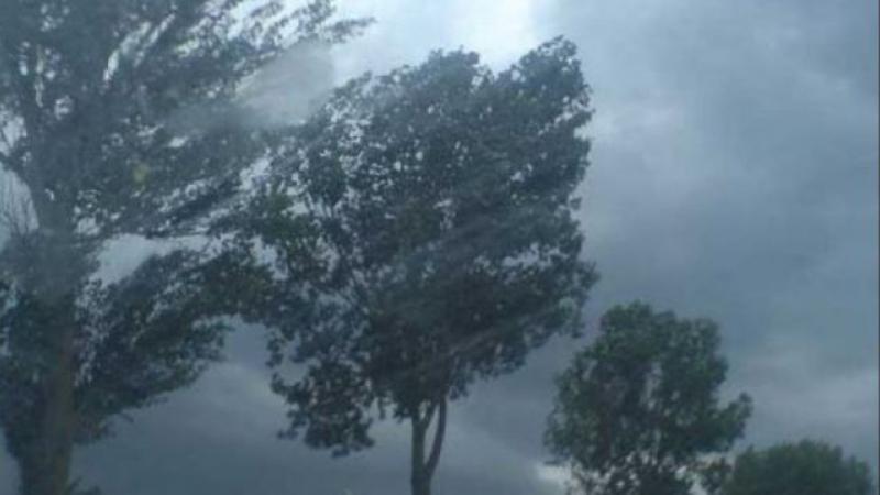 Atenţionare meteo de vânt puternic