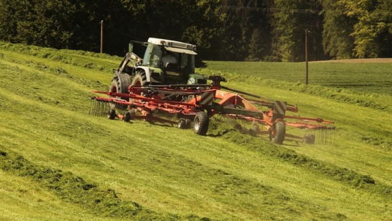 Avertismentul producătorilor agricoli: România rămâne fără forță de muncă, din cauza ajutoarelor sociale!
