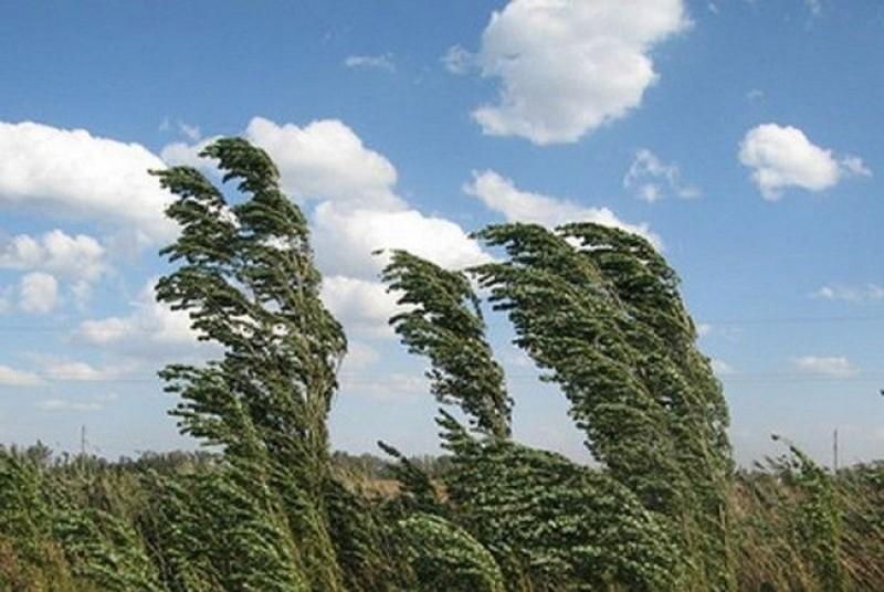 Avertizare ANM: Cod galben de vânt în Botoșani