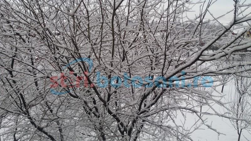 Avertizare meteorologică emisă de Administraţia Naţională de Meteorologie pentru Botoşani
