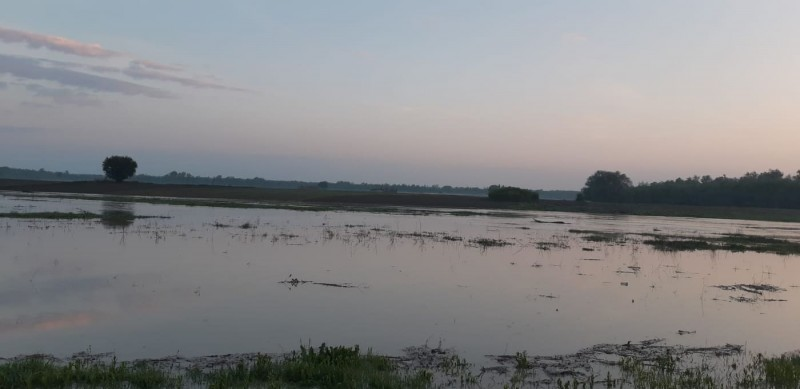 Avertizări cod portocaliu şi cod galben de inundaţii în bazine hidrografice din județul Botoșani!