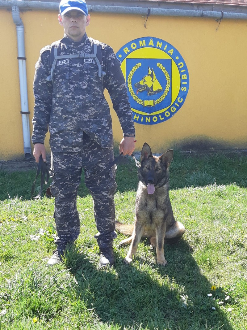 Bătrân din județ, găsit de un câine polițist