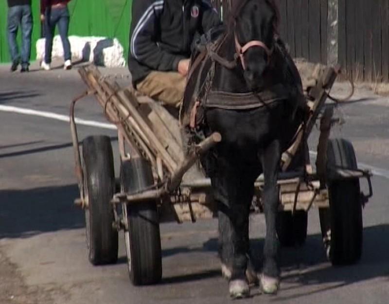 Bătrân lăsat în mijlocul străzii, după ce a fost lovit de un căruțaș beat!