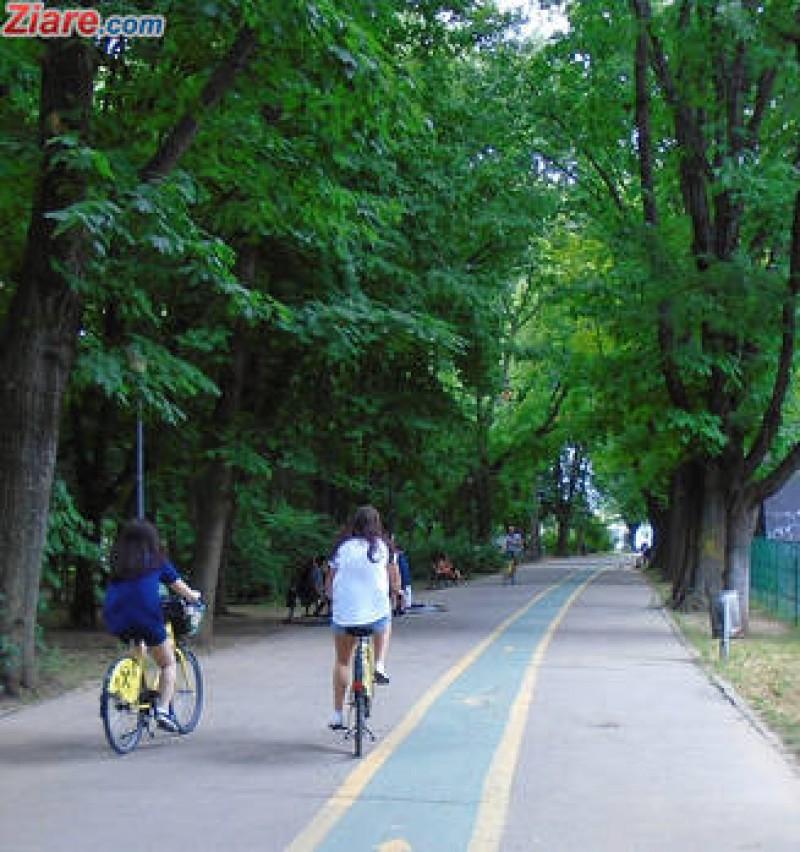 Biciclistii vor fi sanctionati mai bland pentru incalcarea regulilor de circulatie!