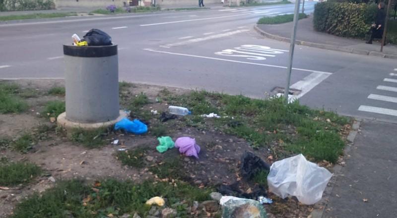 Botoșăneni sancționați de către polițiștii locali, pentru modul în care au abandonat deșeurile în spațiul public
