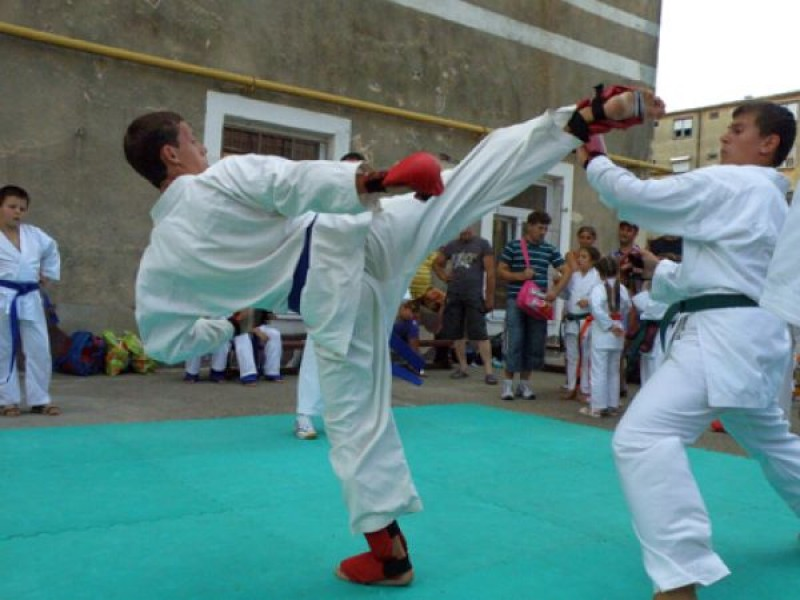 BOTOSANI: Competitie nationala de karate!