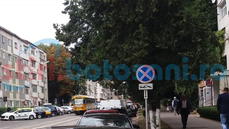 Botoşani: Indicatoare uitate pe domeniul public, spre ameţirea şoferilor