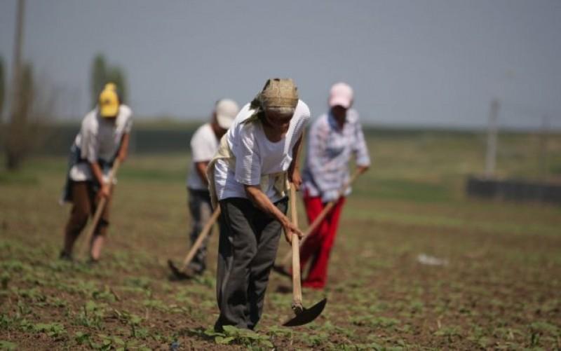 Calitatea locului de muncă: Țara din UE în care munca nu te scoate din sărăcie
