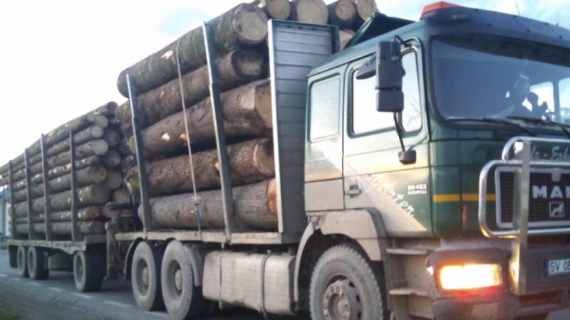 Cărăuş de lemne sancţionat şi lăsat fără marfă de poliţiştii botoşăneni