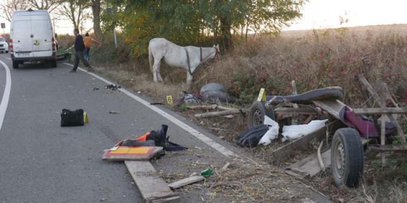 Căruță distrusă și cal omorât de o furgonetă la intrarea în Darabani. VIDEO