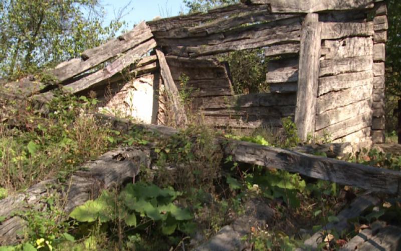 """Casa în care s-a născut Brâncuşi s-a prăbuşit. """"Stăteam şi ne uitam cum cade. Nu avem ce să mai facem"""""""
