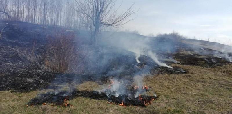 Câțiva botoșăneni au mers să pescuiască, însă au provocat un incendiu de vegetație