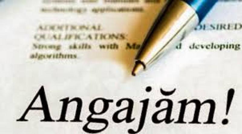 Cauți de lucru? VEZI ce oferă angajatorii din Botoșani și din alte județe!