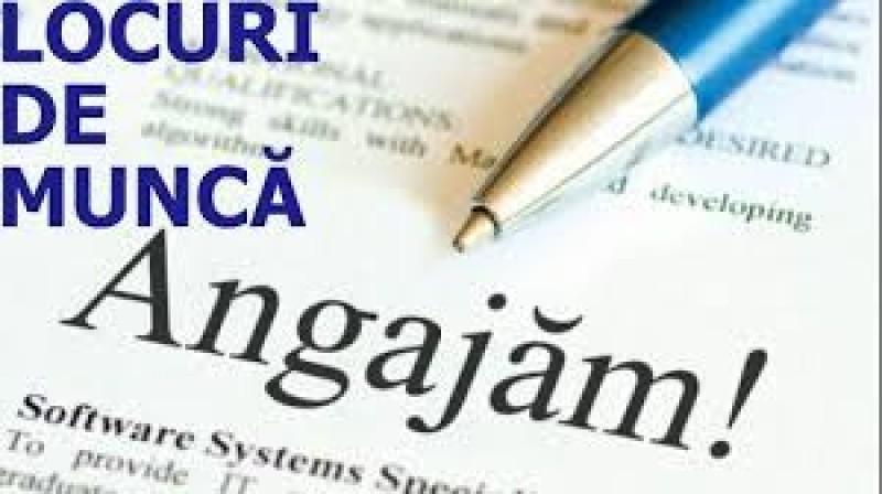 Cauți de lucru? VEZI oferta angajatorilor din Botoșani și a celor din alte județe!